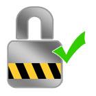 Secure Safe Websites padlock icon